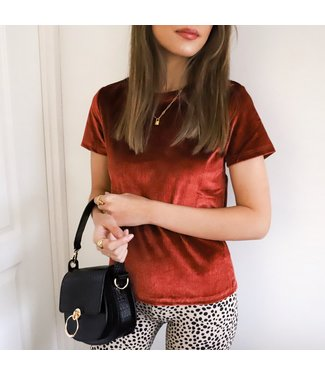 Robina Velvet Top / Rust
