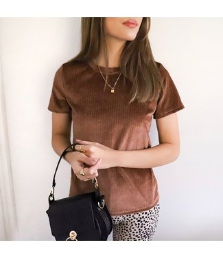 Robina Velvet Top / Brown
