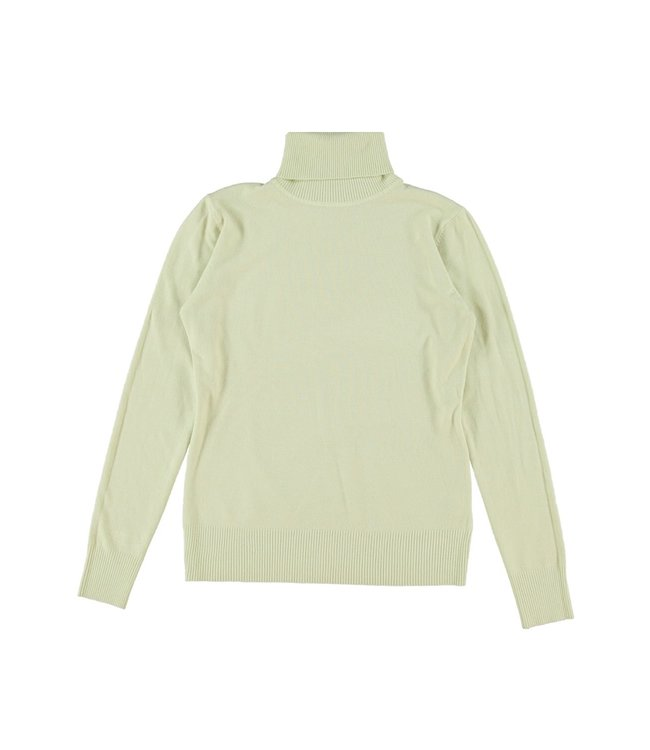 Tamara Turtleneck Knit / Pistachio