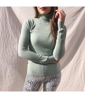 Millie Turtleneck Knit / Sage Green