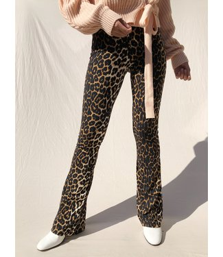 Gold Leopard Flared Leggings