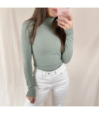 Amory Turtleneck Knit / Sage Green