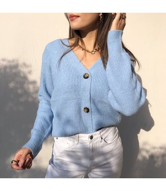 Sona Button Knit Cardigan / Blue