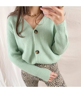 Sona Button Knit Cardigan / Green
