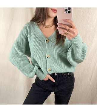 Ruby Button Knit Cardigan / Green