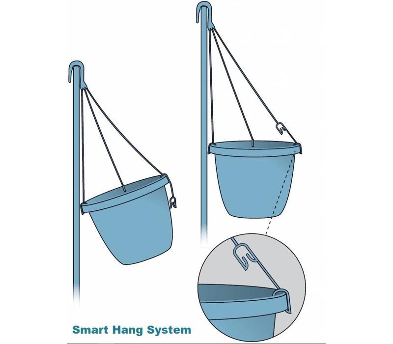 Mandevilla Sundaville Pink Hanging pot