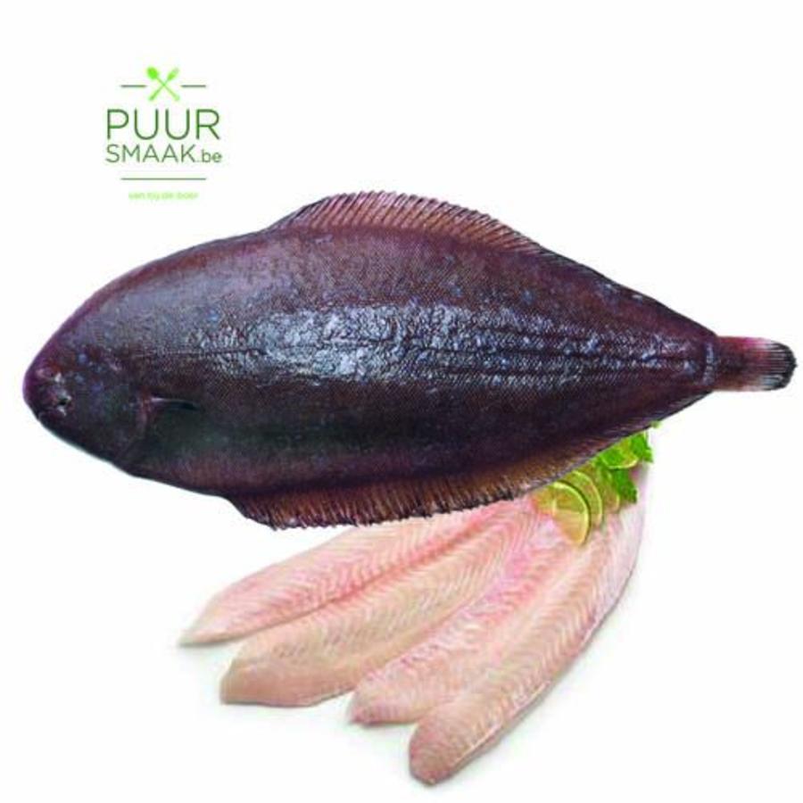Tong 7 per kg (bruto)-1
