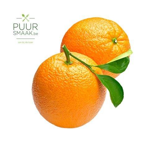 Appelsien Bio  klein