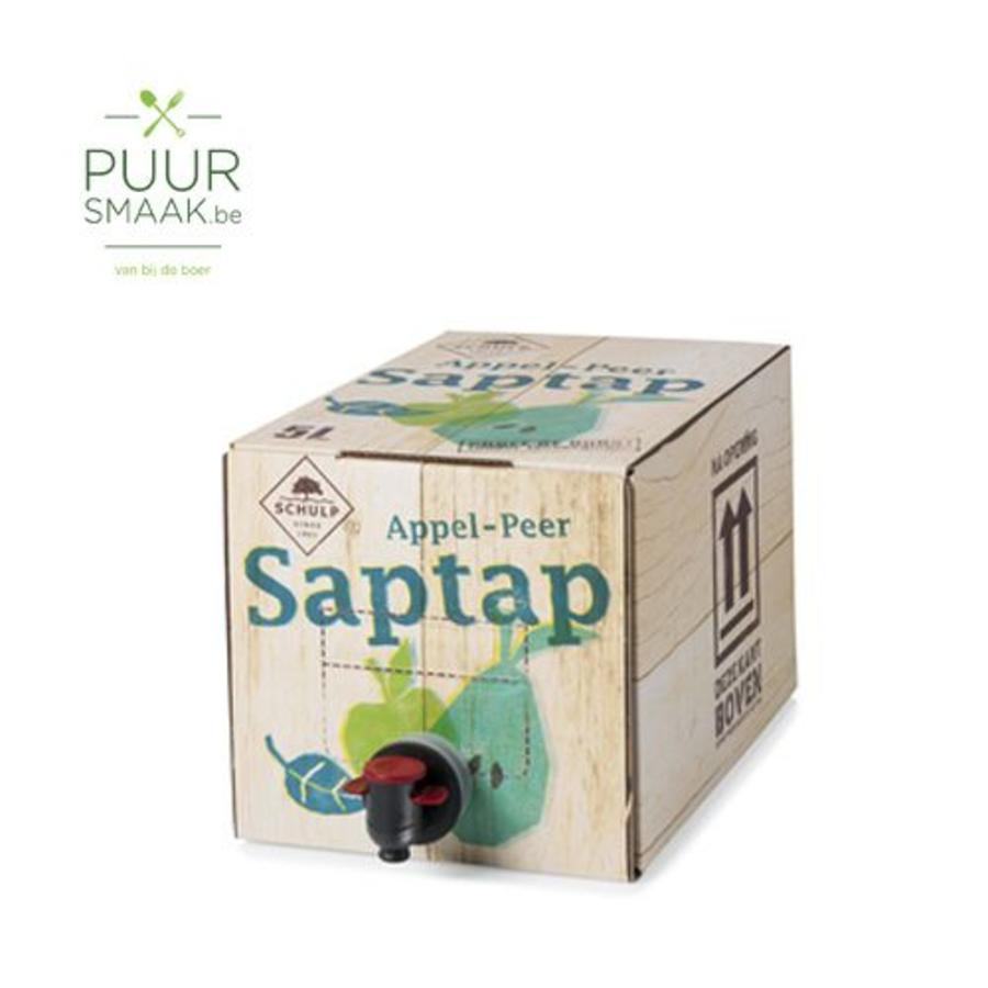 Saptap Appel/Peer-1