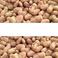 Primeuraardappel los voor friet (ongewassen)