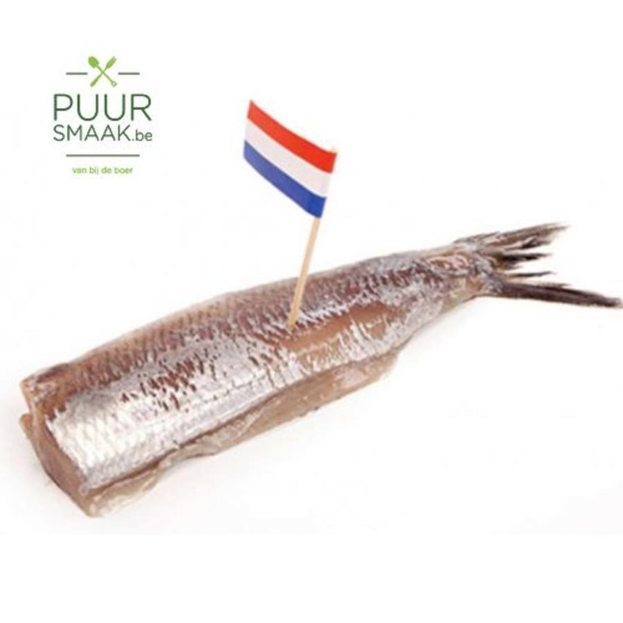 Hollandse maatjes-1