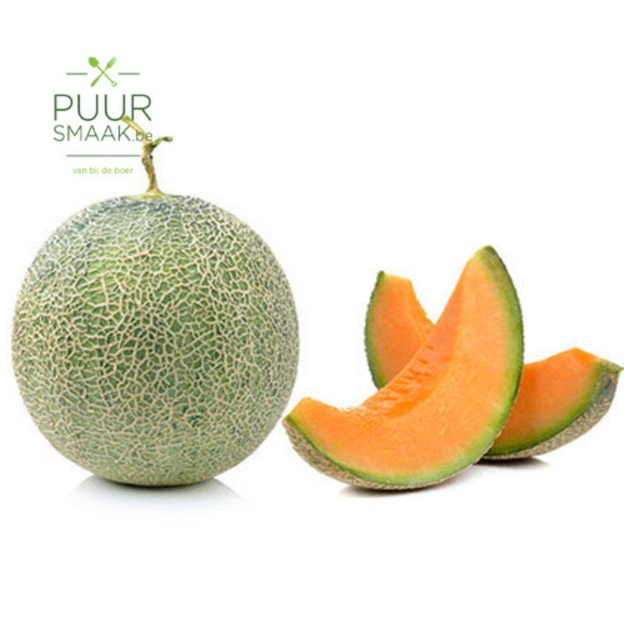 Meloen Cavaillon-1