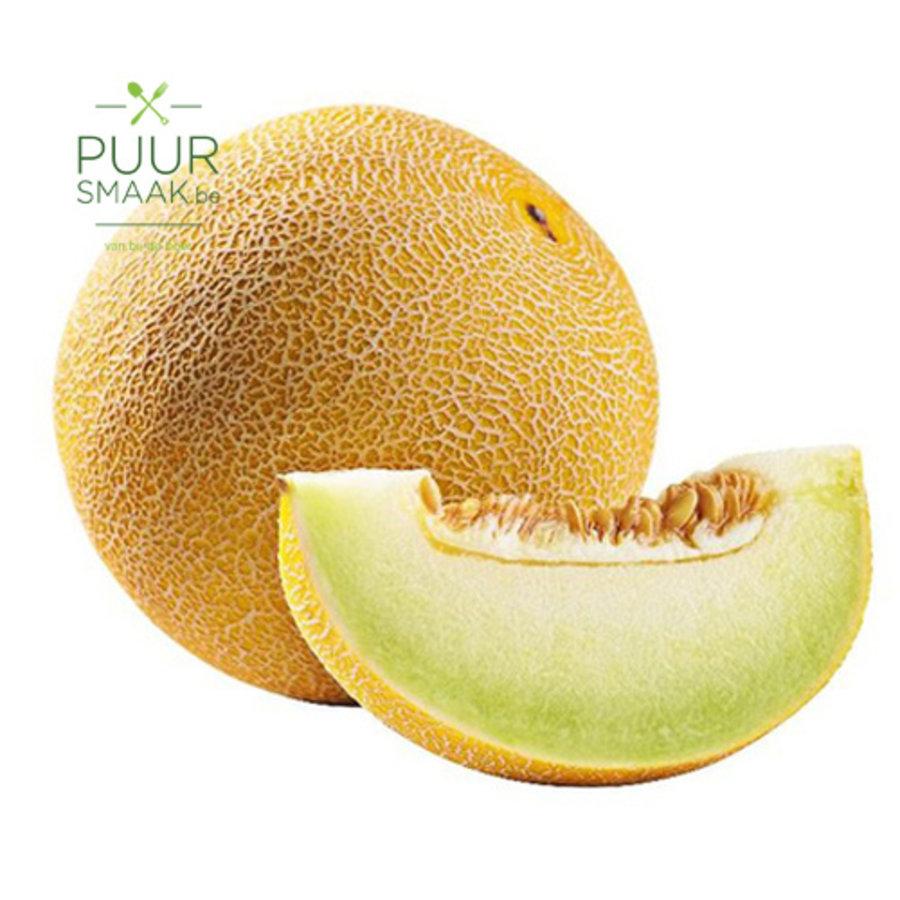 Meloen Galia-1