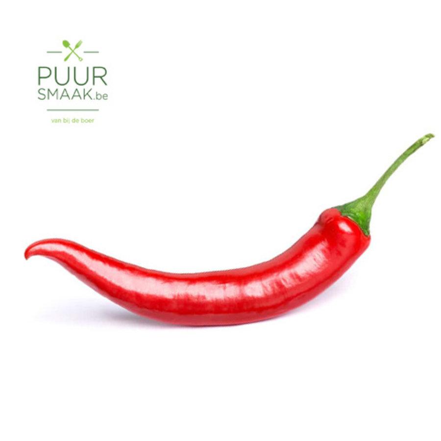 Chili peper-1