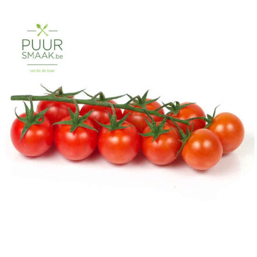Tomaat cherry-1