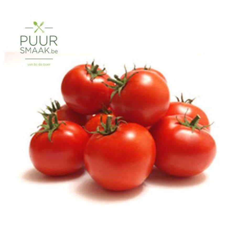 Grondtomaat A tomaat-1