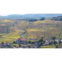 thumb-Mâcon-Villages 'Les Mulots'-2
