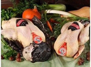Bresse kalkoen/turkey A.O.C. (dinde de Bresse) Slagerij De Leeuw Amsterdam