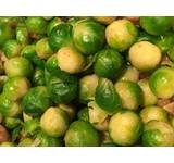 Spruiten (Brussels sprouts)
