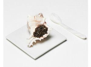 Schelp met bloemkool/kaffircustard (amuse)