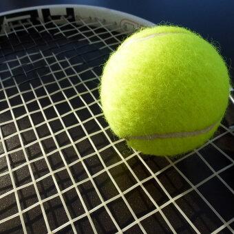 ABN AMRO World Tennis Tournament 2020 - Donnerstag