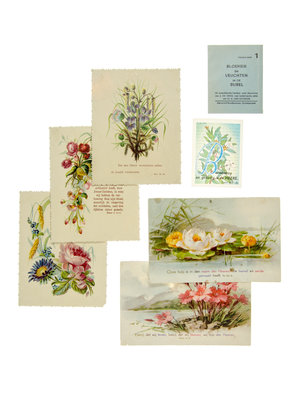 Bijbels Museum Cards with flowers