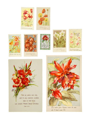 Bijbels Museum Cards with red flowers