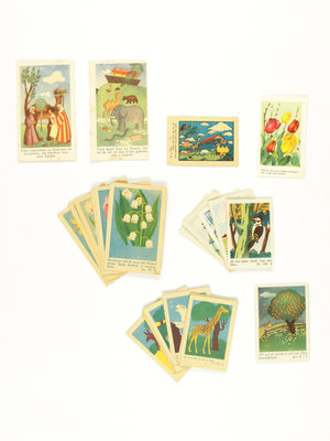 Bijbels Museum Biblical Sunday school stamps flora and fauna