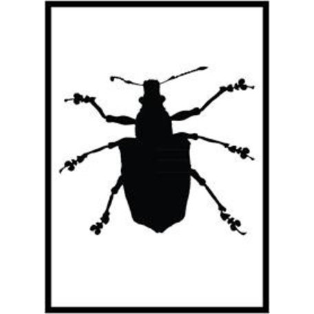 Monochrome poster beetle
