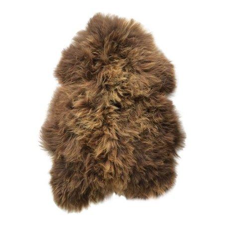 Sheepskin Norwegian brown