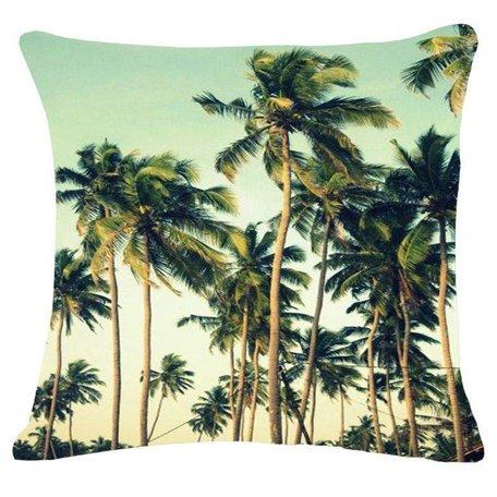 Tropical cushion palms