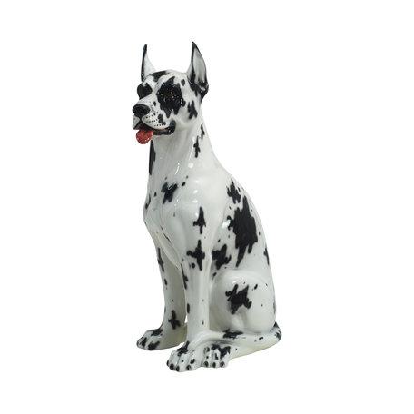 Harlequin Deense dog