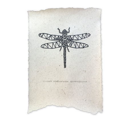 Elephant poo poster - Dragonfly