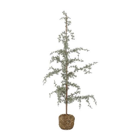 Decoration Cedar tree - H 120 cm