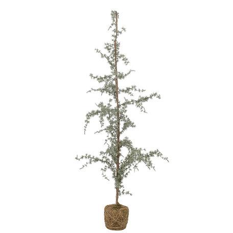 Decoration Cedar tree - H 150 cm