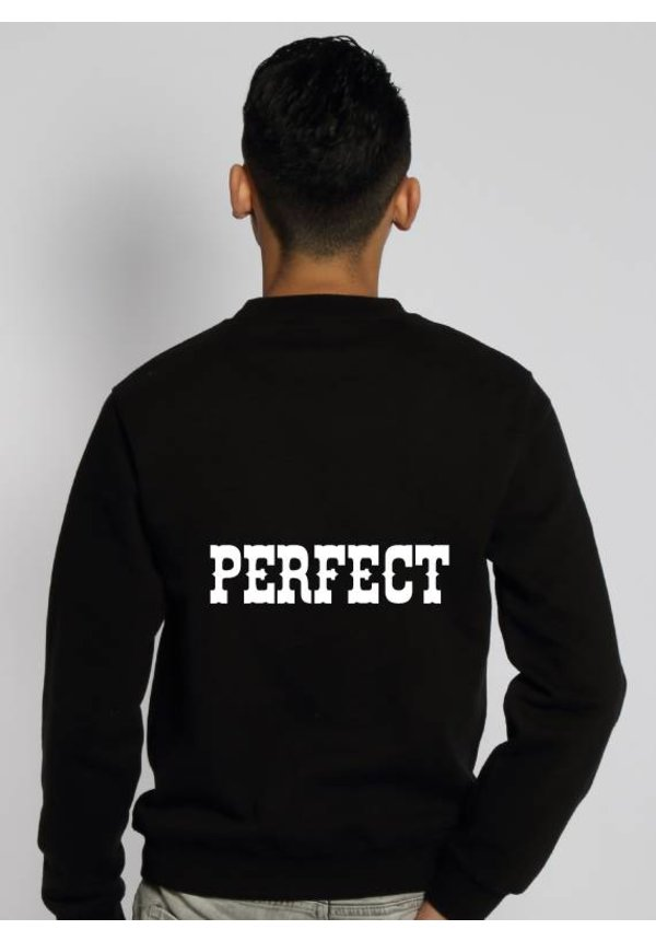 PERFECT SWEATER (MEN)
