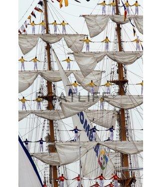 Boatlife Schilderij boot Sail E4