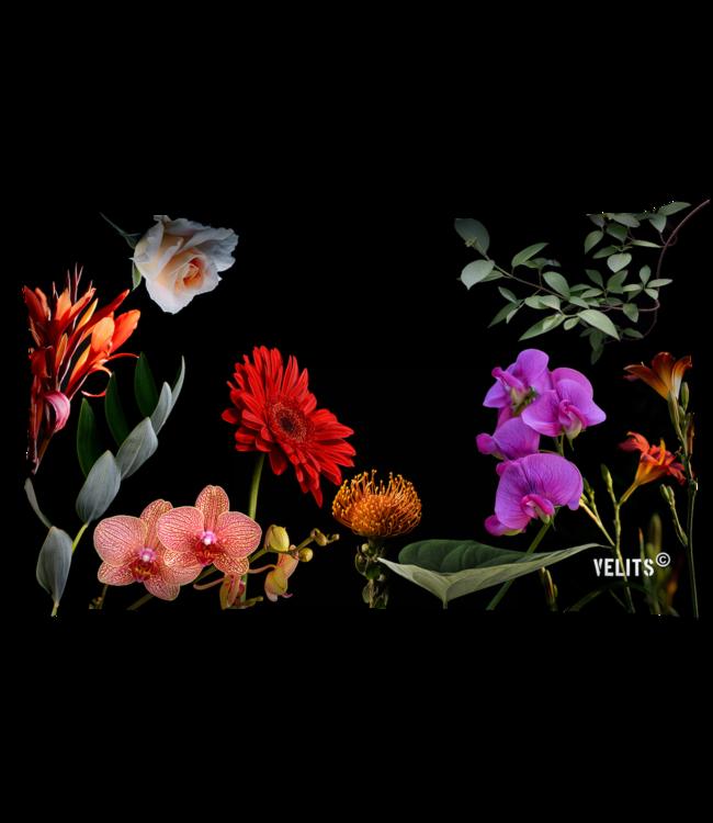 Velits Buitenkussen bloemen print zwart