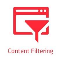 ZyXEL E-iCard Content Filtering 2.0, 1 jaar VPN100