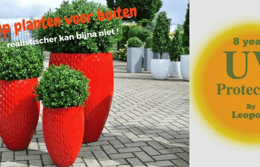 Nep planten voor buiten