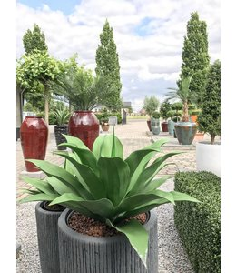 LeopoldFlora Artificial outdoor Agave plant 50 cm
