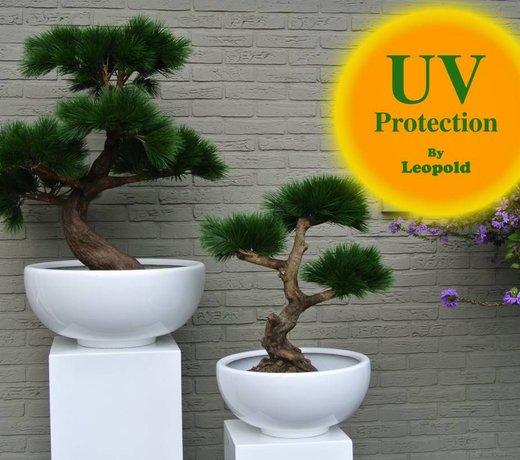 Kunst bonsai voor buiten