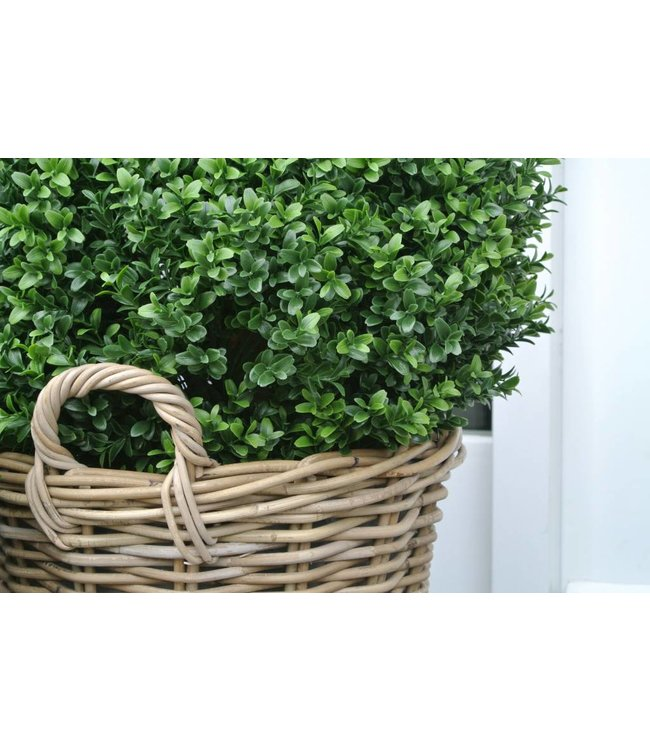 Artificial boxwood ball 50cm in basket
