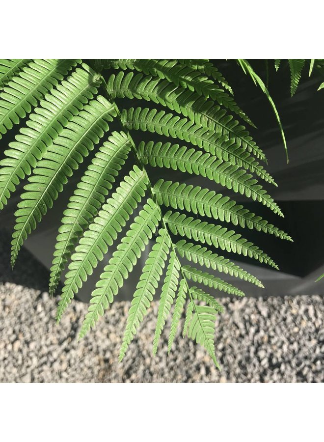 Artificial outdoor Fern bouquet 60 cm UV-protected