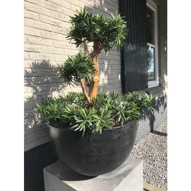 Artificial design plant Podocarpus 70cm UV