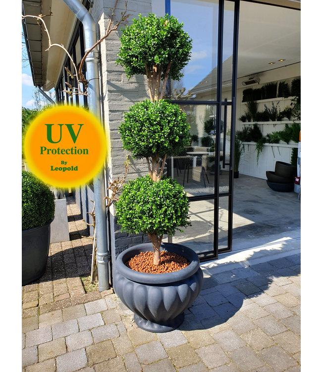UV Kunst Buxus Triobol 175