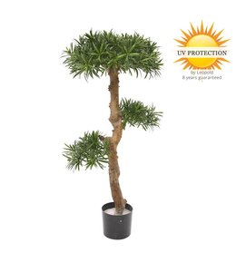 Outdoor artificial Podocarpus Bonsai 105cm UV