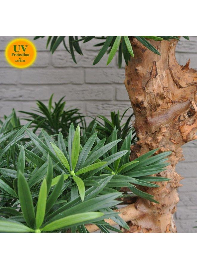 Mooie Kunstboom Podocarpus Bonsai 160 cm uv