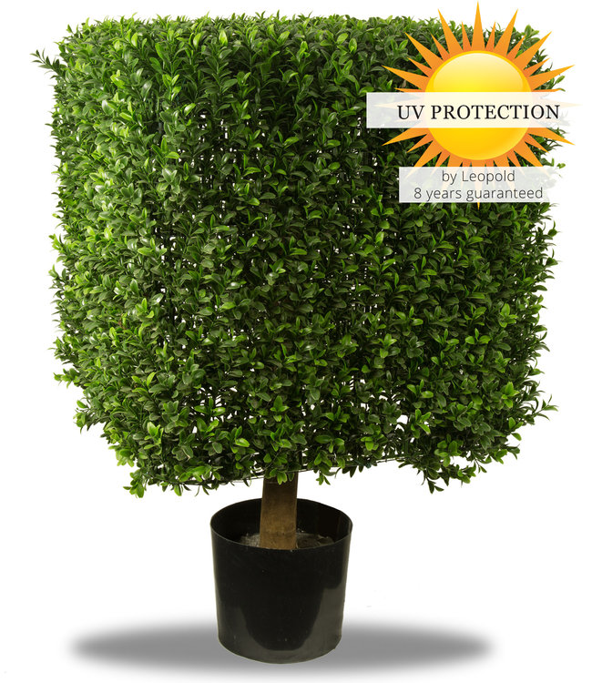Artificial boxwood square 50cm uv for outdoors