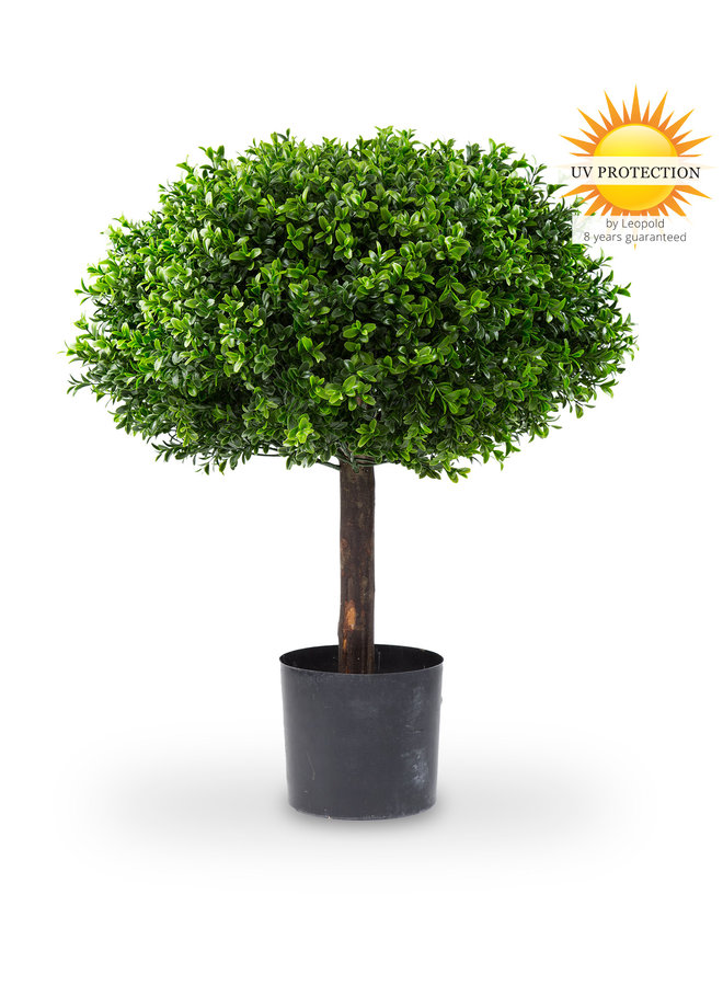 Artificial outdoor Boxwood 1/2 ball on trunk 65 cm UV protected